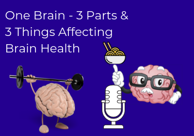 One Brain – 3 Parts and 3 Things Affecting Brain Health
