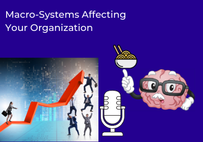 Macro-Systems Affecting Your Organization