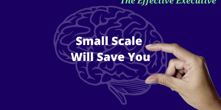 The Effective Executive – Small Scale Will Save You