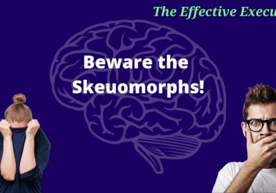 The Effective Executive – Beware the Skeuomorphs